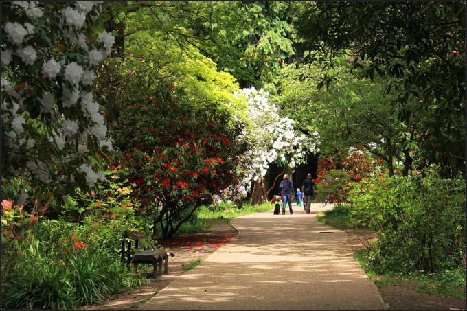 公園のイメージ画像